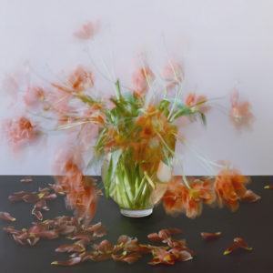 Michael Wesely, Still Life Series, 2007.